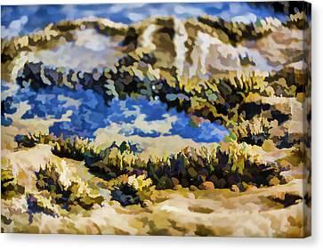 Laguna Beach Tide Pool Pattern 3 Canvas Print by Scott Campbell