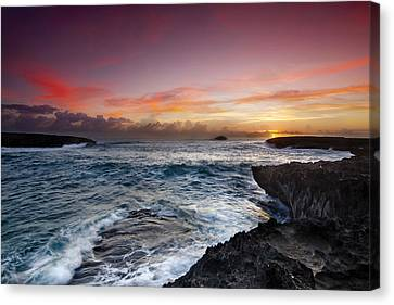 Laie Point Sunrise Canvas Print by Sean Davey