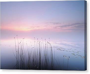 Lake Canvas Print
