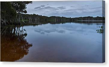 Lake Ainsworth 2 Canvas Print