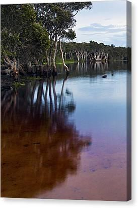 Lake Ainsworth Canvas Print