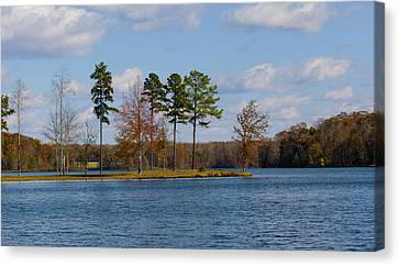 David Lester Canvas Print - Lake Anna 4 by David Lester