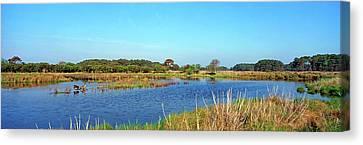 Chincoteague Canvas Print - Lake At Chincoteague National Wildlife by Panoramic Images