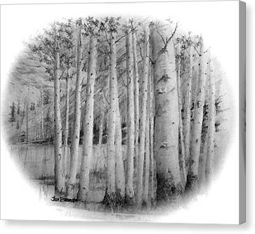 Canvas Print featuring the drawing Lake Birches by Jim Hubbard