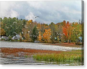 Lake Carmi Autumn 2012 Canvas Print by Deborah Benoit
