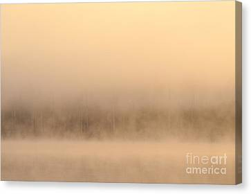 Lake Cassidy With Fog And Trees Along Shoreline Shrouded In Fog Canvas Print
