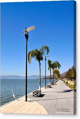 Lake Chapala - Mexico Canvas Print by David Perry Lawrence