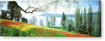 Lake Constance, Insel Mainau, Germany Canvas Print by Panoramic Images