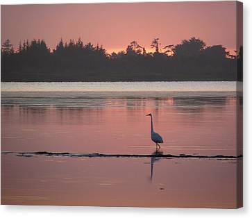 Lake Earl Sunset  Canvas Print by Gracia  Molloy