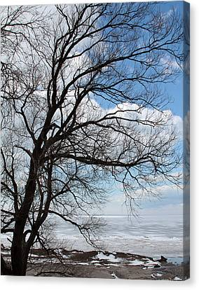Canvas Print featuring the photograph Lake Erie In March by John Freidenberg