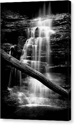 Lake Falls Canvas Print by Jeff Burton