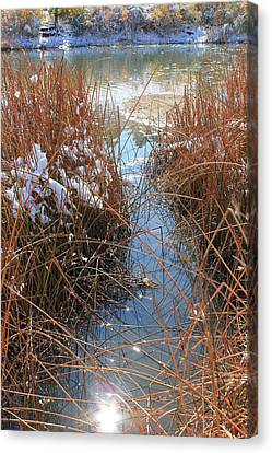 Canvas Print featuring the photograph Lake Glitter by Diane Alexander