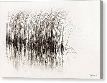 Lake Grasses Canvas Print
