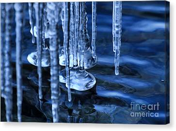 Lake Ice Canvas Print by Charline Xia