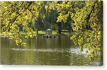 Canvas Print featuring the photograph Lake In Boston Park by Alex King