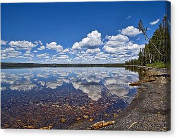 Lake Lewis Reflections Canvas Print