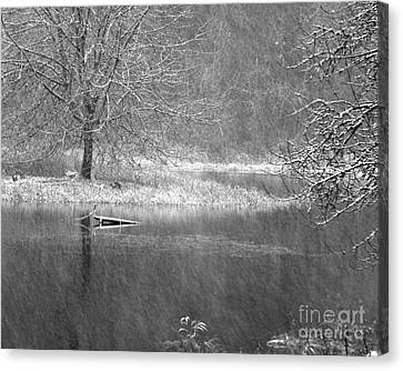 Lake Lois Canvas Print by Chuck Flewelling