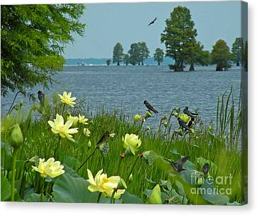 Canvas Print featuring the photograph Lake Lotus And Swallows by Deborah Smith