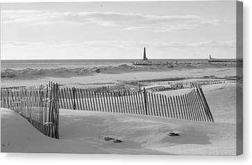 Lake Michigan Don't Fence Me In Canvas Print by Rosemarie E Seppala