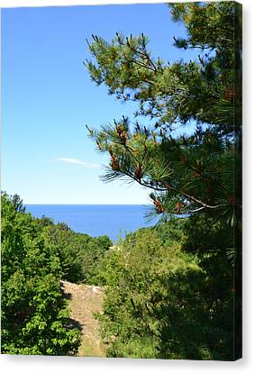 Lake Michigan From The Top Of The Dune Canvas Print by Michelle Calkins