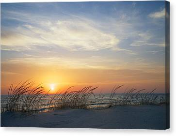Lake Michigan Sunset With Dune Grass Canvas Print by Mary Lee Dereske