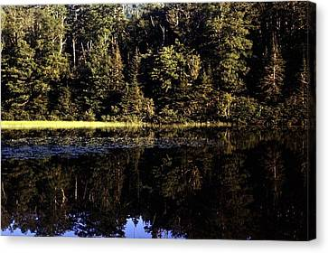 Lake O Law Canvas Print by George Cousins