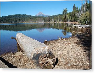 Canvas Print featuring the photograph Lake Of The Woods 3 by Debra Thompson