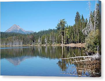 Canvas Print featuring the photograph Lake Of The Woods 4 by Debra Thompson