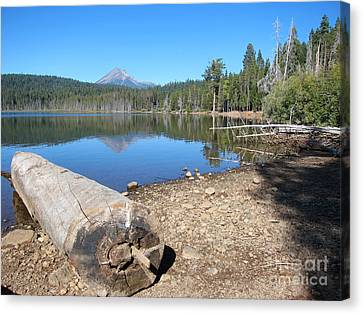 Canvas Print featuring the photograph Lake Of The Woods 5 by Debra Thompson