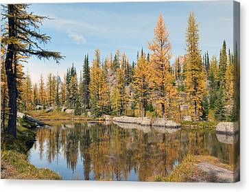 Lake Ohara Alberta Canada Canvas Print by Heather Simonds