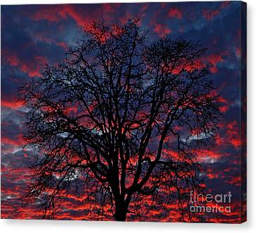 Canvas Print featuring the photograph Lake Oswego Sunset by Nick  Boren