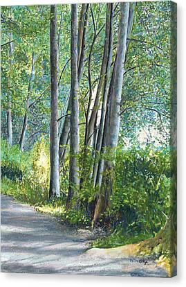 Lake Padden Series - Kathleen Keller Memorial Bench Canvas Print