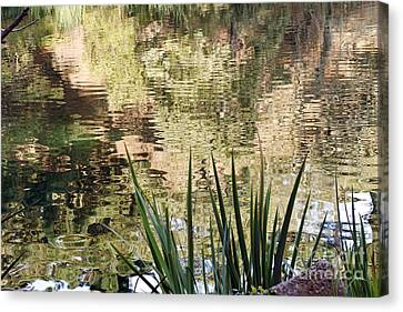 Canvas Print featuring the photograph Lake Reflections by Kate Brown