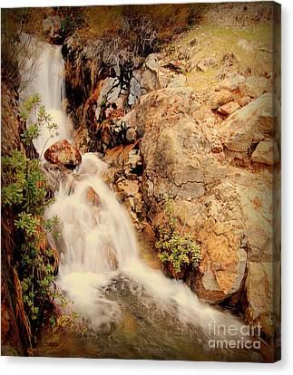 Lake Shasta Waterfall 2 Canvas Print by Garnett  Jaeger