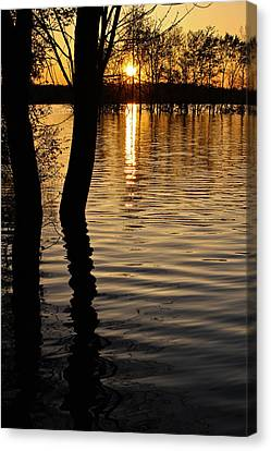 Canvas Print featuring the photograph Lake Silhouettes by Julie Andel