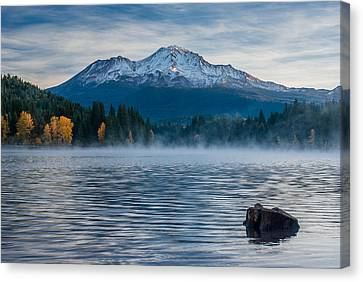Lake Siskiyou Morning Canvas Print