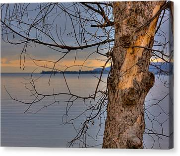 Lake Superior Canvas Print by Larry Capra