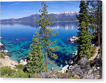 Lake Tahoe Beauty Canvas Print by Scott McGuire