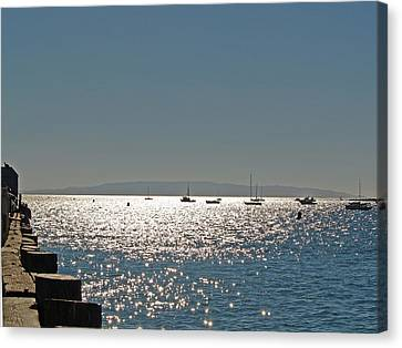 Canvas Print featuring the photograph Lake Tahoe - California by Haleh Mahbod