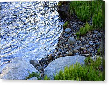 Lake Tahoe River's Edge Canvas Print by Anne Barkley