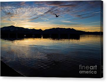 Lake Tahoe Sunset Canvas Print by Suzanne Luft