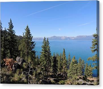 Lake Tahoe Through The Trees Canvas Print by Jayne Wilson