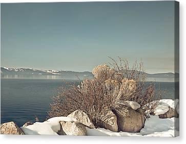 Lake Tahoe Winter Canvas Print by Kim Hojnacki