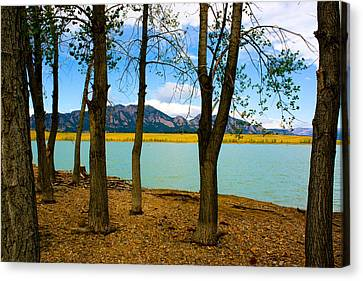 Lake Through The Trees Canvas Print by Juli Ellen