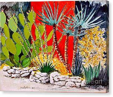 Lake Travis Cactus Garden Canvas Print by Fred Jinkins
