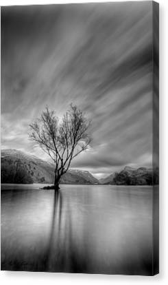 Lake Tree Mon Canvas Print