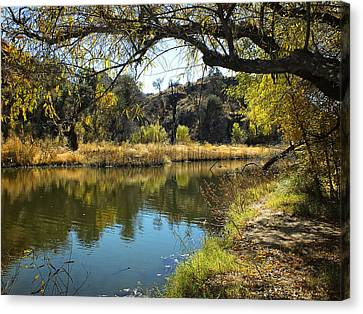 Lake View Canvas Print by Lucinda Walter