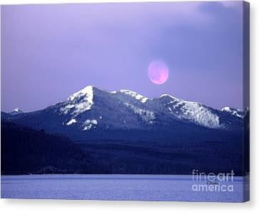 Lake Yellowstone Canvas Print by Linda  Parker