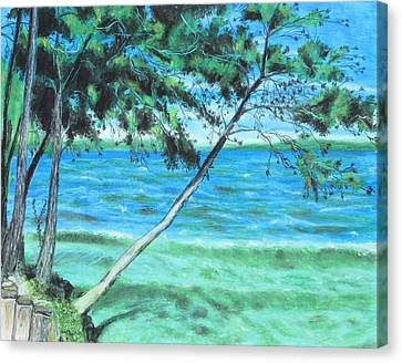Lakeland 3 Canvas Print by Jeanne Fischer