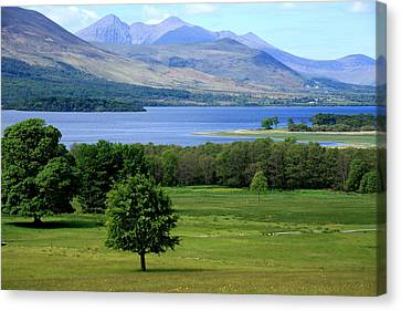 Lakes Of Killarney - Killarney National Park - Ireland Canvas Print
